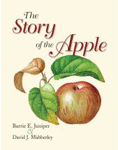 The Story of the Apple